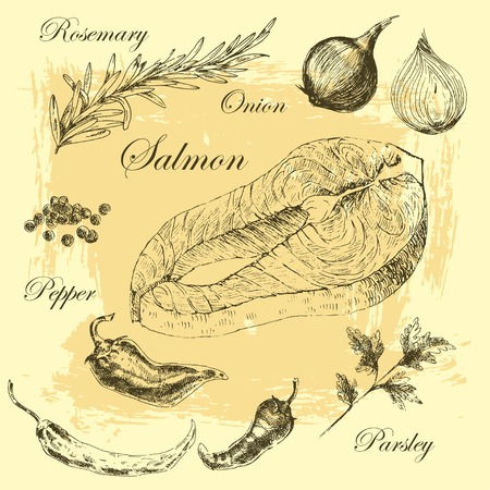 salmon steak: vector salmon steak hand drawn illustration with rosemary and peppers Illustration