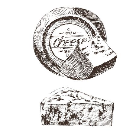 vector cheese sketch drawing designer template. farm food collection. hand drawn dairy products Ilustrace
