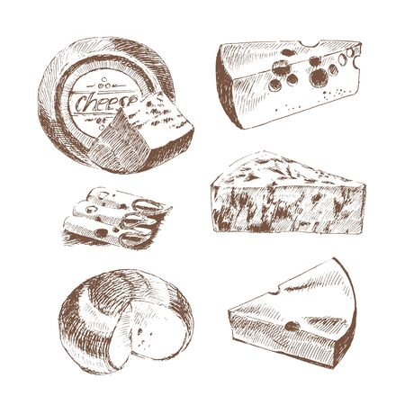 parmesan: vector cheese sketch drawing designer template. farm food collection. hand drawn dairy products Illustration
