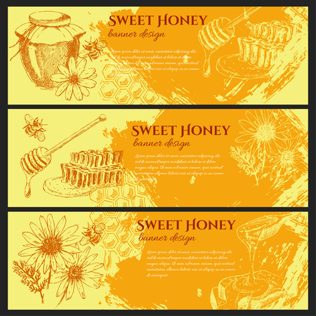 vector honey elements set. stock banner design. hand drawn honey jar, spoon, stick, cells, camomile. ink sketch of organic nature product