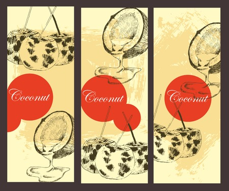 vector coconuts hand drawn sketch banner. vintage style detailed ink and pencil illustrations Ilustracja