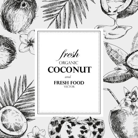 Mano cocos dibujadas plantilla de diseño. estilo de dibujo vectorial retro ejemplo de la comida tropical.