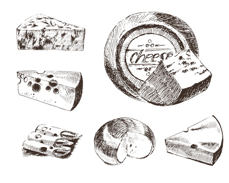 vector cheese sketch drawing designer template. farm food collection. hand drawn dairy products Ilustracja