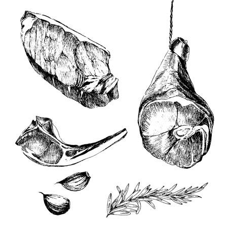 rib: vector meat steak sketch drawing designer templates. lamb rib, parma ham, sirloin steak