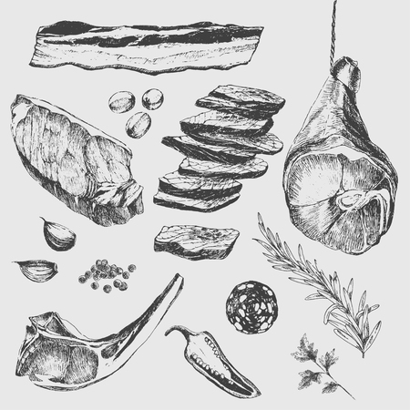 bosquejo filete de plantillas de diseño de dibujo vectorial de carne. costilla de cordero, jamón de Parma, solomillo