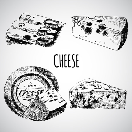 cheese sketch drawing designer template. farm food collection. drawn dairy products Ilustracja