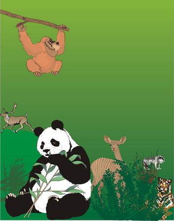 Zoo layout design