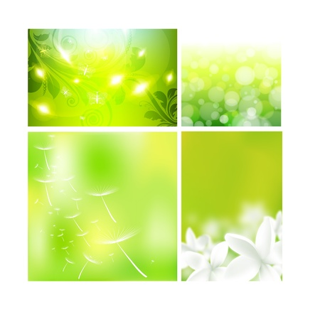 Concept design layout for summer floral layouts Vector