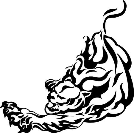 puma: aggressiva pantera - puma