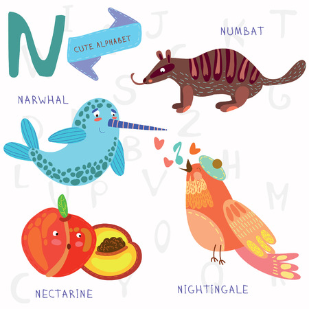 ruiseñor: Diseño de alfabeto en un estilo colorido.