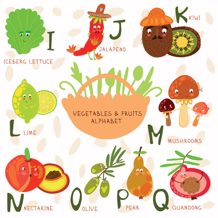 nectarine: Vector illustration of fruit and vegetables. I, j, k, l,m, n ,o,p,q letters.Iceberg lettuce, jalapeno, kiwi,lime, mushroom, nectarine, olive, pear,quandong. Alphabet design in a colorful style.