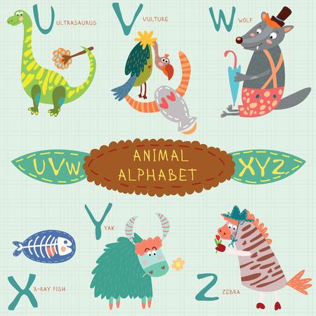 Cute animal alphabet. U, v, w, x, y, z letters. Ultrasaurus, vulture, wolf, x-ray fish, yak, zebra.Alphabet design in a colorful style.