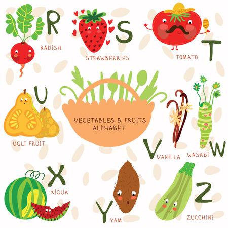 Vector illustratie van groenten en fruit. R, s, t, u, v, w, x, y, z letters.Radish, stra wberries, tomaat, ug i fruit, vanille, Wasab i, Xigua, yam, zucchin i. Alfabet ontwerp in een kleurrijke stijl.