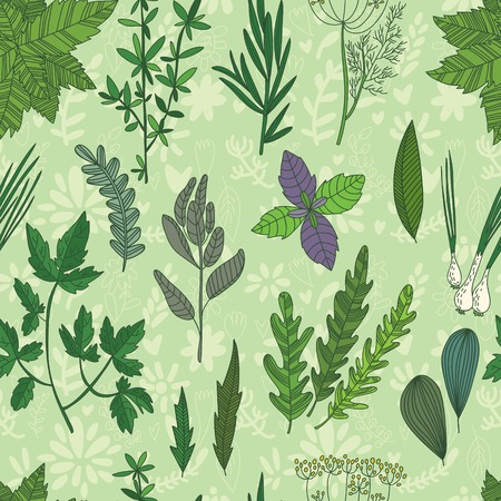 Cute seamless pattern with Herbs and Spices.Mint,thyme,rosemary,dill,green onion,parsley,sage,arugula,basil. Bright Seamless pattern can be used for wallpaper, pattern fills, web page background,surface textures. Vector