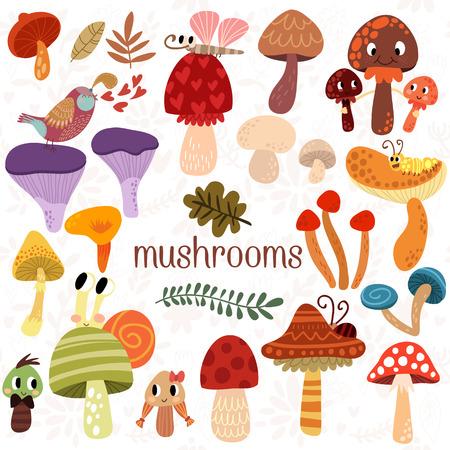 mushroom: Brillantes tipos diferentes de setas establecidos en el vector. Tarjeta sabrosa en estilo de dibujos animados sobre fondo blanco