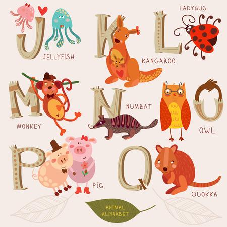 かわいい動物のアルファベット。J、k、l、m、n、o、p、q の文字。クラゲ、カンガルー、monkeyl、フクロアリクイ、フクロウ、豚、クオッカ。レトロな