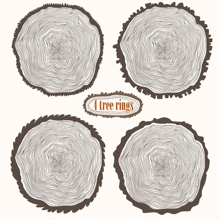 wood cross section: Concept vector set - Four Tree rings.Annual trees