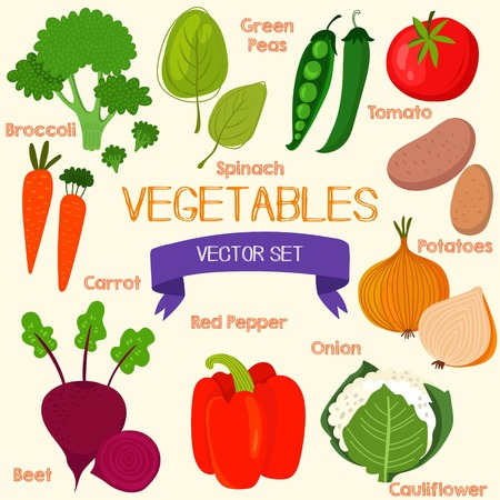 vegetable cook: Tasty vegetables in bright set. Spinach, broccoli, carrots, beet, pepper, cauliflower, potatoes, onion, tomatoes and green peas