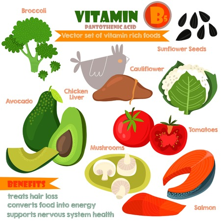 Vitamins and Minerals foods Illustrator set 9.Vector set of vitamin rich foods. Vitamin B5-broccoli, chicken liver, avocado, sunflower seeds, cauliflower, tomatoes, mushrooms and salmon Illustration