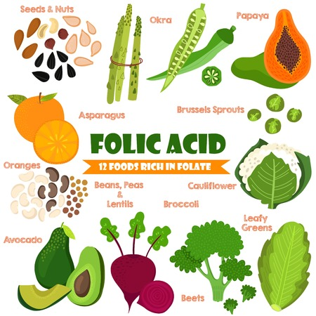 Vitamins and Minerals foods Illustrator set 14.Vector set of 12 foods rich in folate. Folic Acid-nuts, seeds, asparagus, okra, oranges, beans, peas, lentils, avocado,brussels sprouts, beets, broccoli and cauliflower