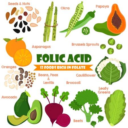 Vitaminas y Minerales alimentos Illustrator establecen 14.Vector conjunto de 12 alimentos ricos en ácido fólico. Ácido Fólico-nueces, semillas, espárrago, okra, naranjas, frijoles, guisantes, lentejas, aguacate, coles de Bruselas, la remolacha, el brócoli y la coliflor