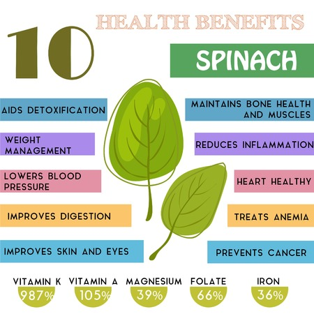 10 Health benefits information of Spinach. Nutrients infographic
