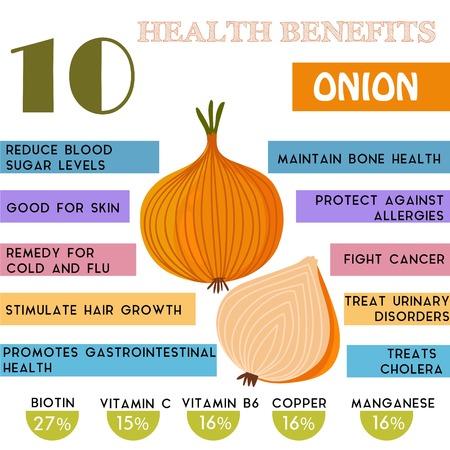 salute: 10 Benefici per la salute informazioni di cipolla. Nutrienti infographic, illustrazione vettoriale. - Vettoriali