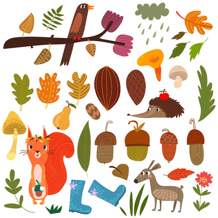 Vector Set of cartoon Forest Animals and autumn elements- stock vector Illustration