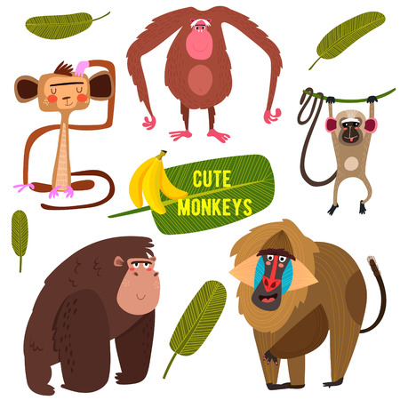 banana leaves: Cute fife funny monkeys colorful collection. (All objects are isolated groups so you can move and separate them)-stock vector