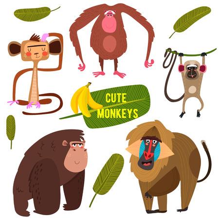 Schattige fife grappige apen kleurrijke collectie. (Alle objecten zijn geïsoleerde groepen, zodat je kunt verplaatsen en ze te scheiden) -Stock vector