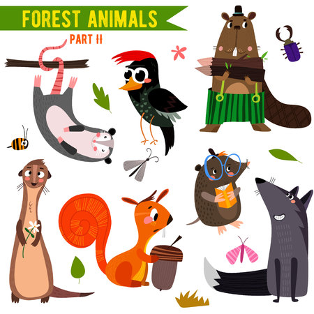 Set of Cute Woodland and Forest Animals. Çizim
