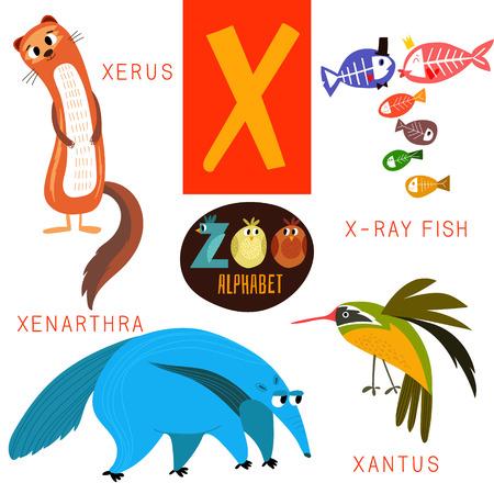 zoologico: Alfabeto zoológico lindo en X letra. Vectores