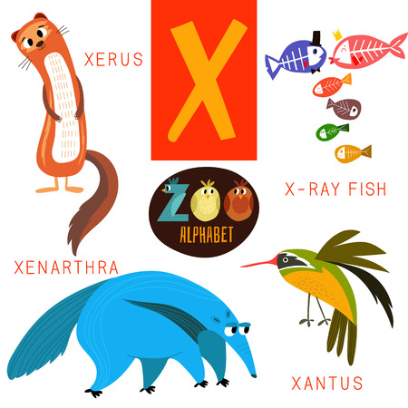 Cute zoo alphabet in X letter.