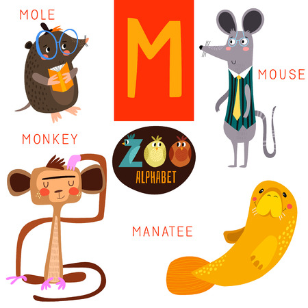 Cute zoo alphabet in M letter. Çizim