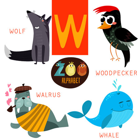 Cute zoo alphabet in vector.W letter. Funny cartoon animals:Wolf,woodpacker,walrus,whale. Alphabet design in a colorful style.
