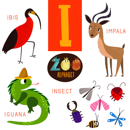 zoo: Cute zoo alphabet in I letter.