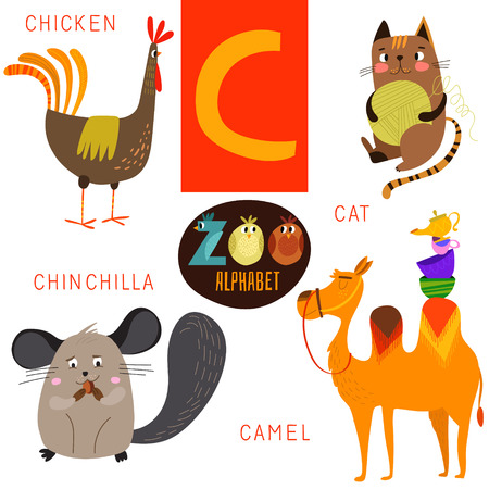 cartoon chicken: Cute zoo alphabet in C letter. Illustration