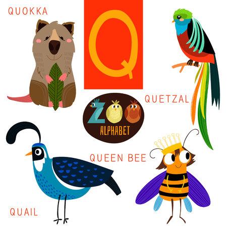 Q 文字のかわいい動物園アルファベット。  イラスト・ベクター素材