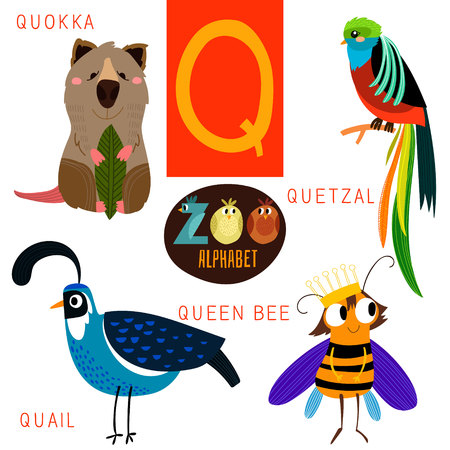 Cute zoo alphabet in Q letter.  Illustration