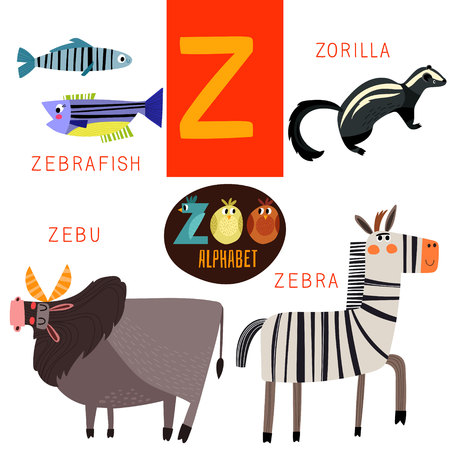 Cute zoo alphabet in Z letter.  矢量图像