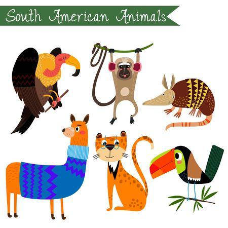 spectacled: Sourth America animals vector illustration.Vector set. Isolated on white background. Sourth America animals cartoon style. Preschool, baby, continents, travelling, drawn - stock vector Illustration
