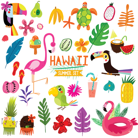 Summer set of Hawaiian symbols and elements- fruits , toucan, flamingo,ice cream and tropical leaves. Perfect for web, card, poster or t-shirt. Vector illustration Illustration