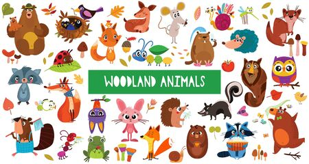 Big collection of cute cartoon forest animals. Set of woodland animals characters isolated on white background.