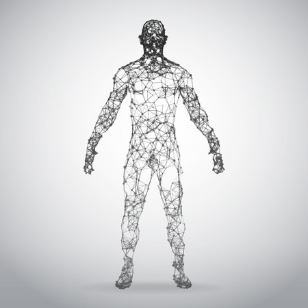 Abstract Wire frame human body. Polygonal 3d model on white background. Vector Illustration