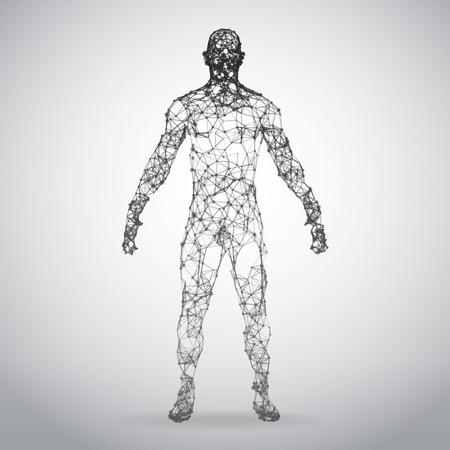 Abstrakter Drahtrahmen menschlicher Körper . Polygonales 3D-Modell auf weißem Hintergrund . Vektor-Illustration Vektorgrafik