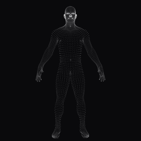 3D human body. Dotted wireframe
