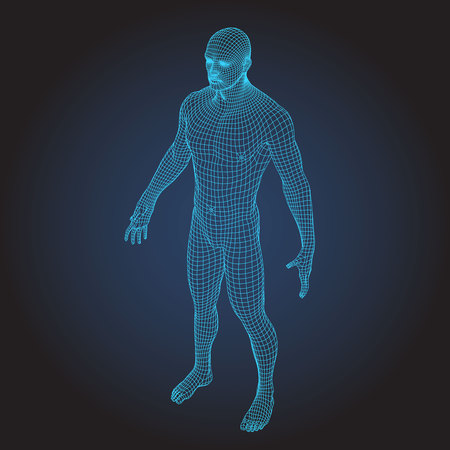 3D wire frame human body full face Vector illustration.