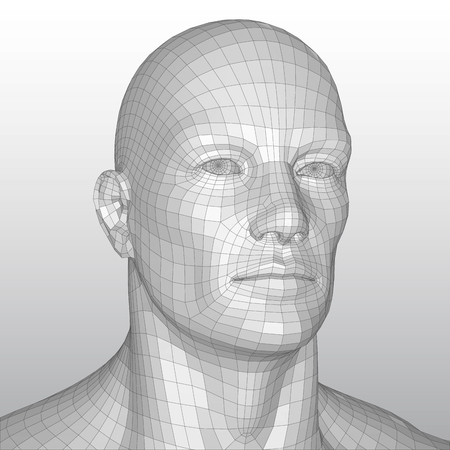 Vector wire frame polygonal human head