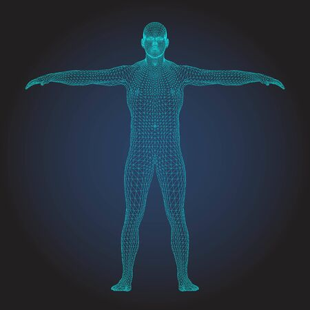 3D wireframe human body T-pose front view Ilustrace