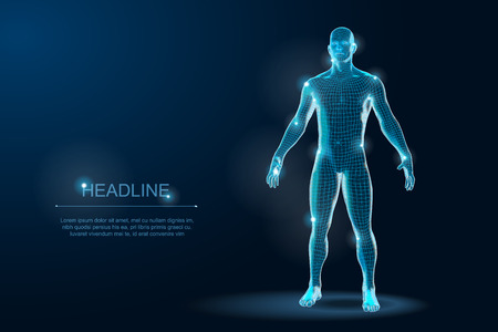 Human Body 3D Polygonal Wireframe Blueprint